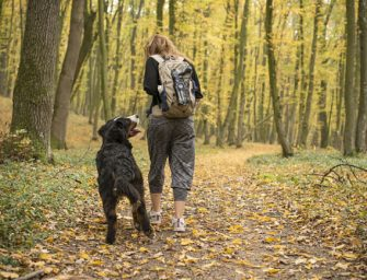 How to Go Hiking with Your Dog: 5 Tips